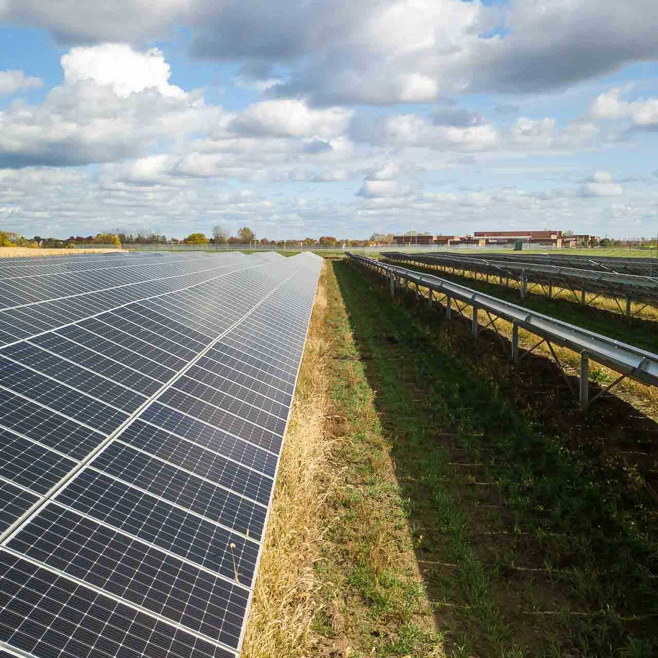 Will States Continue to Promote Solar? Illinois and New York Say Yes