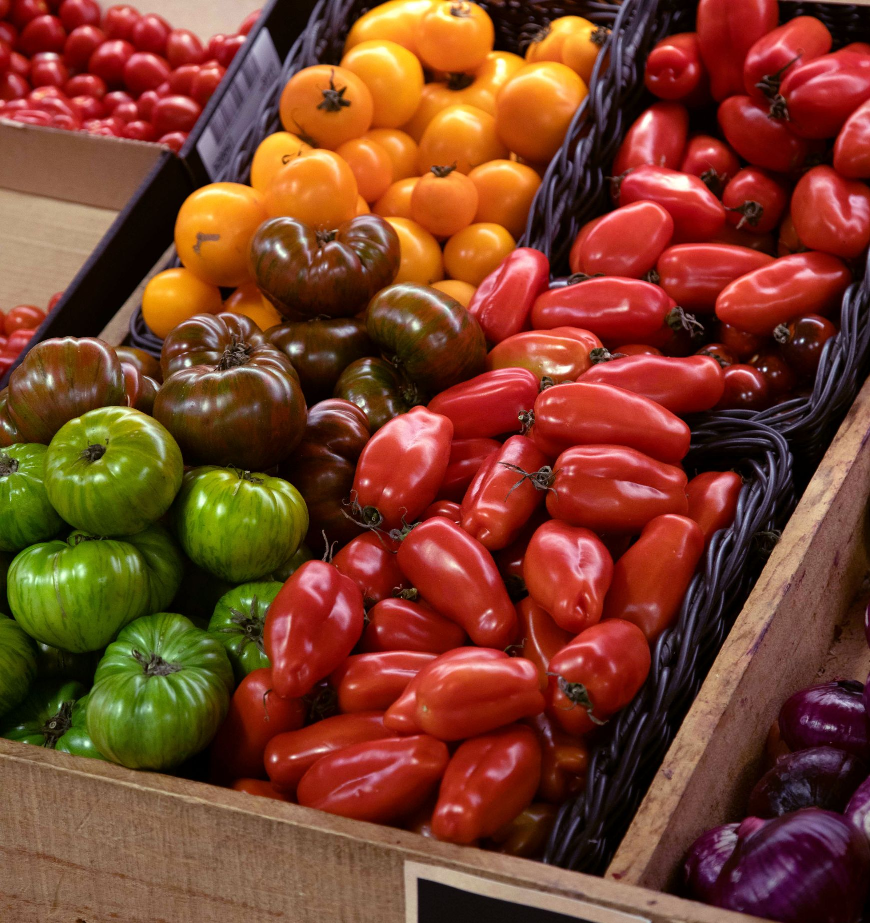 Tomatoes on shelf in grocery store