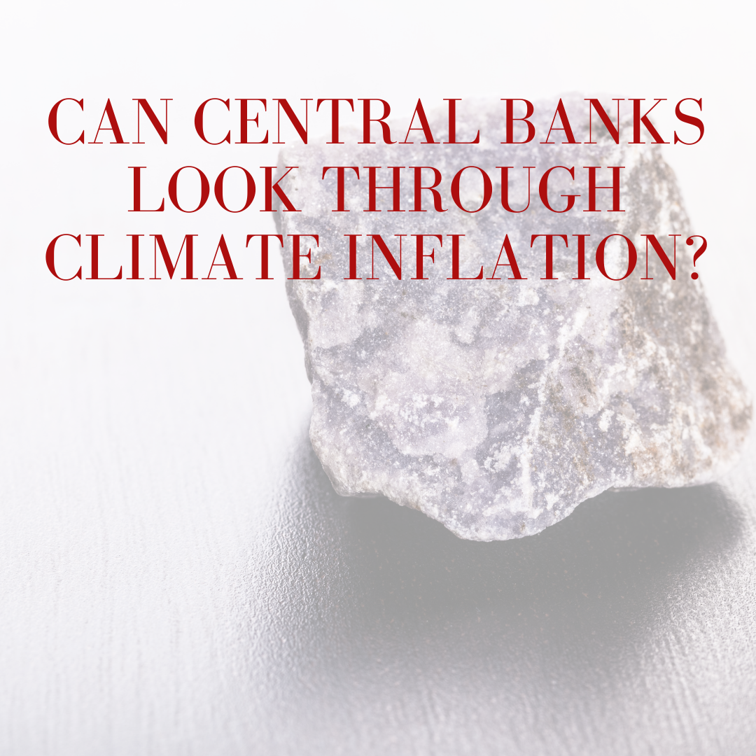 Can Central Banks look through Climate Inflation?