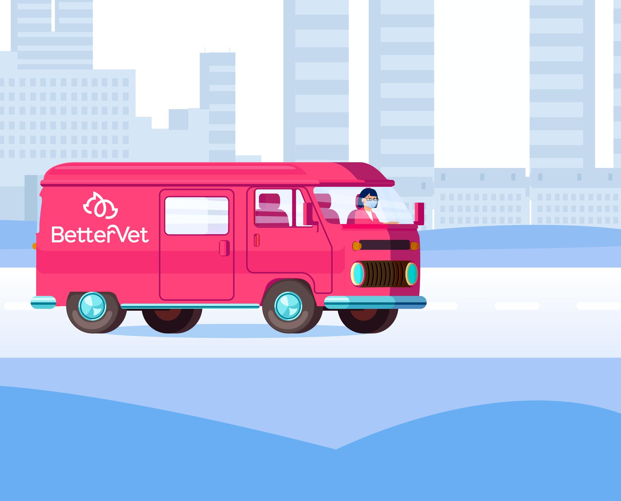 BetterVet vet driving on her car illustration.