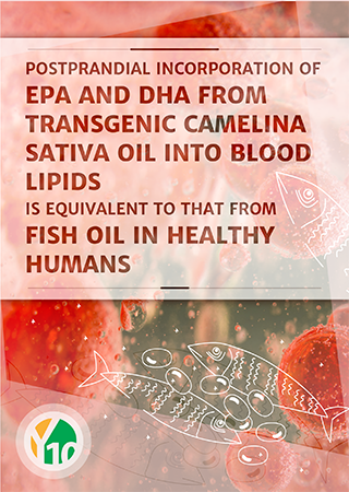 Postprandial incorporation of EPA and DHA from transgenic Camelina sativa oil into blood lipids is equivalent to that from fish oil in healthy humans