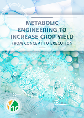 Metabolic engineering to increase crop yield: From concept to execution