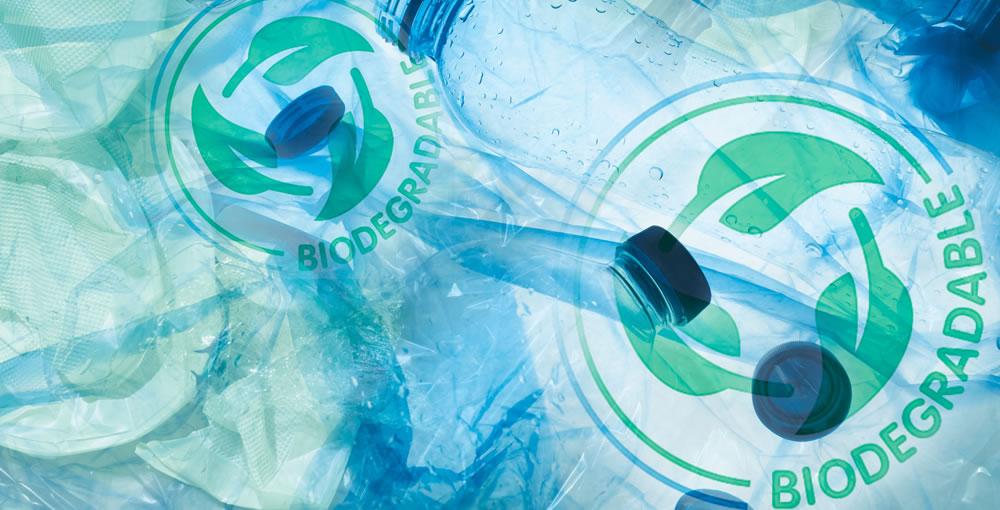 Camelina bioplastics