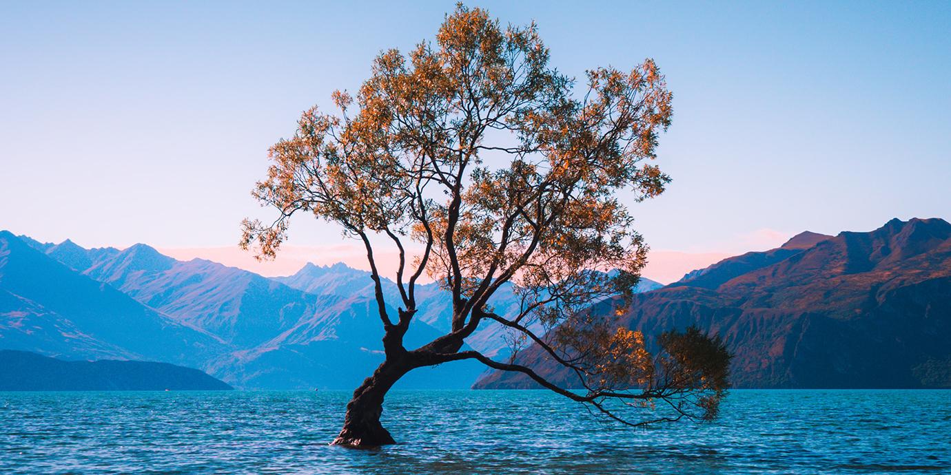 Addressing the climate urgency led by Mātauranga Māori