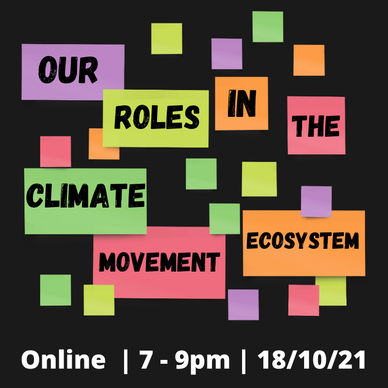 Our roles in the climate movement ecosystem