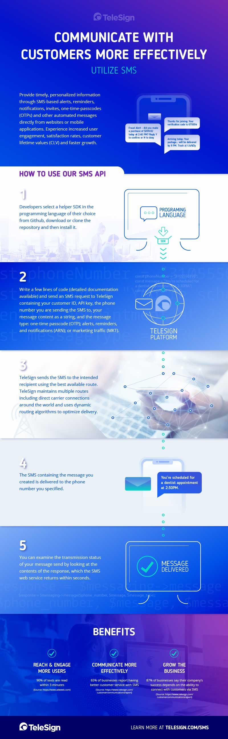 SMS API Infographic