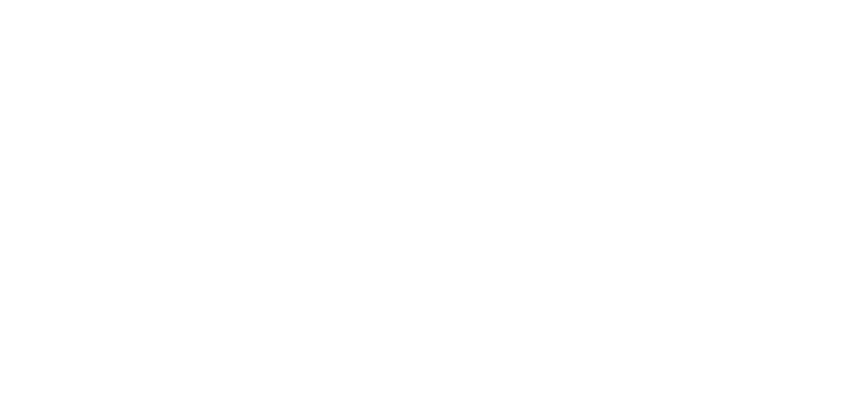Dutch Crypto Investors
