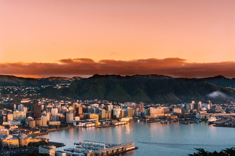 LUMO Lights Up Wellington