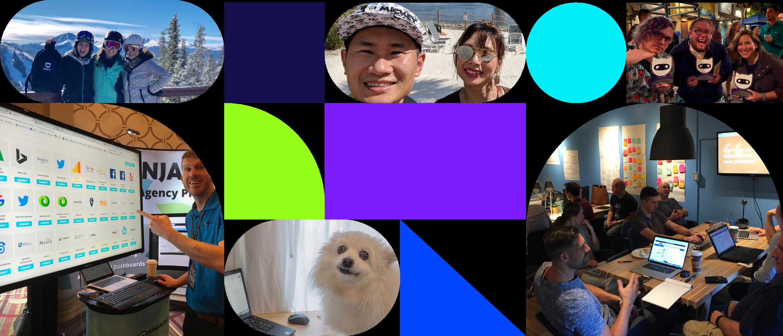 Ninjacat team collage