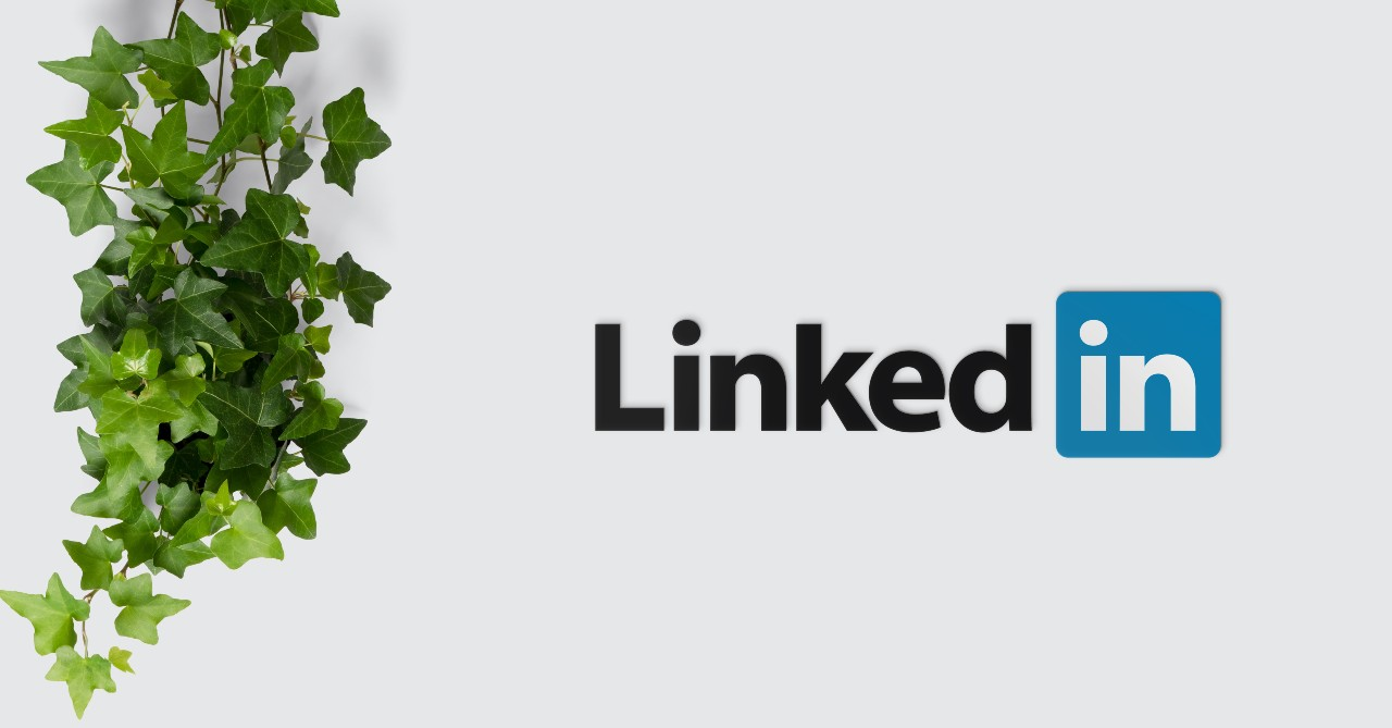 Social Media Marketing: Kanzleien in der LinkedIn-Analyse