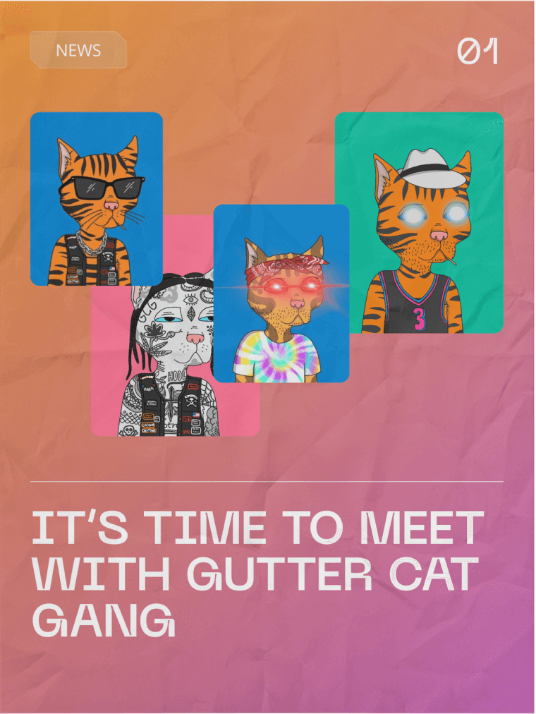 Time To Meet with Gutter Cat Gang
