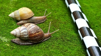 Court says, at $800 an hour, snail-paced doc review won't cut it