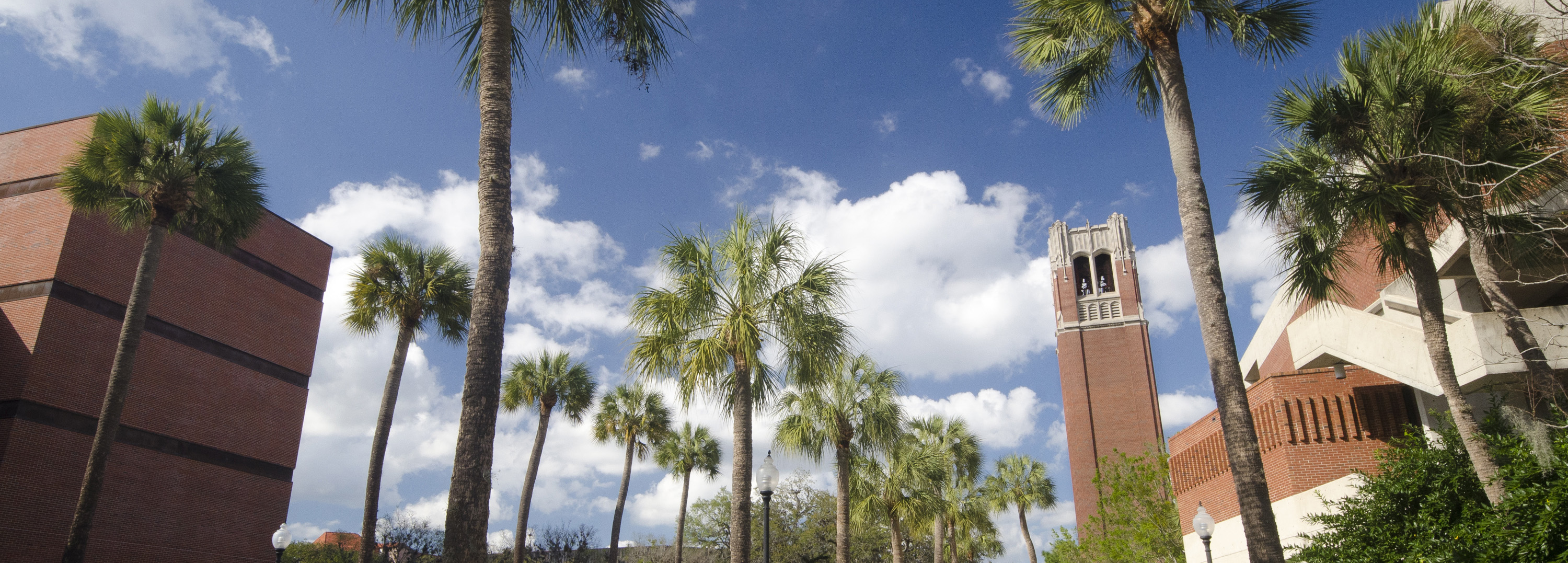 University of Florida eDiscovery Conference [VIDEO]