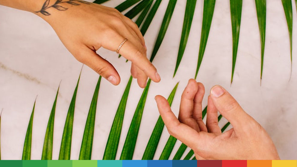 Two hands touching in front of plant leafs