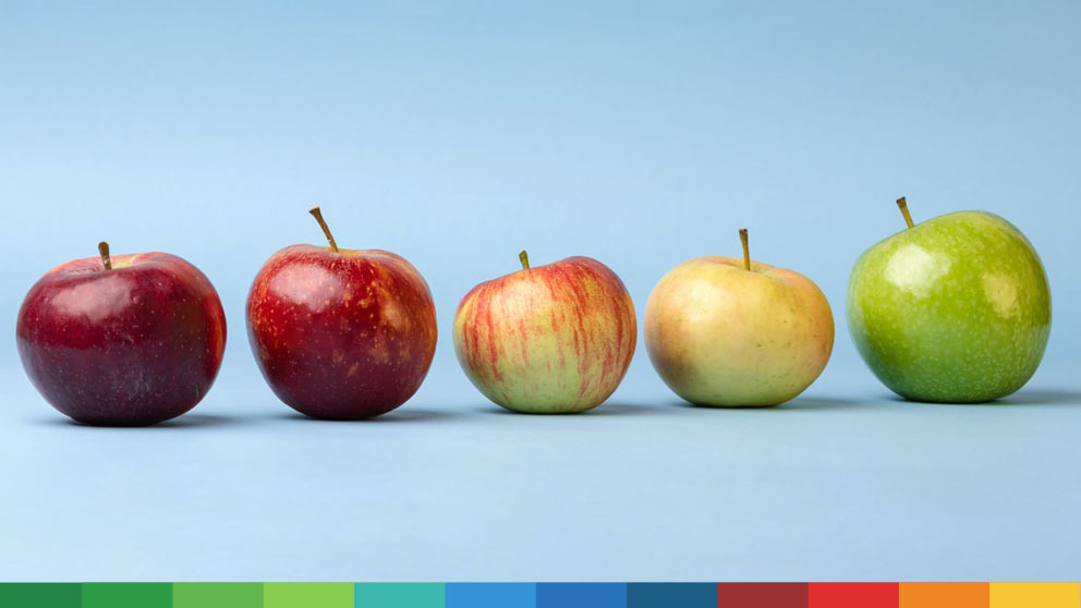 Apples of different color and size