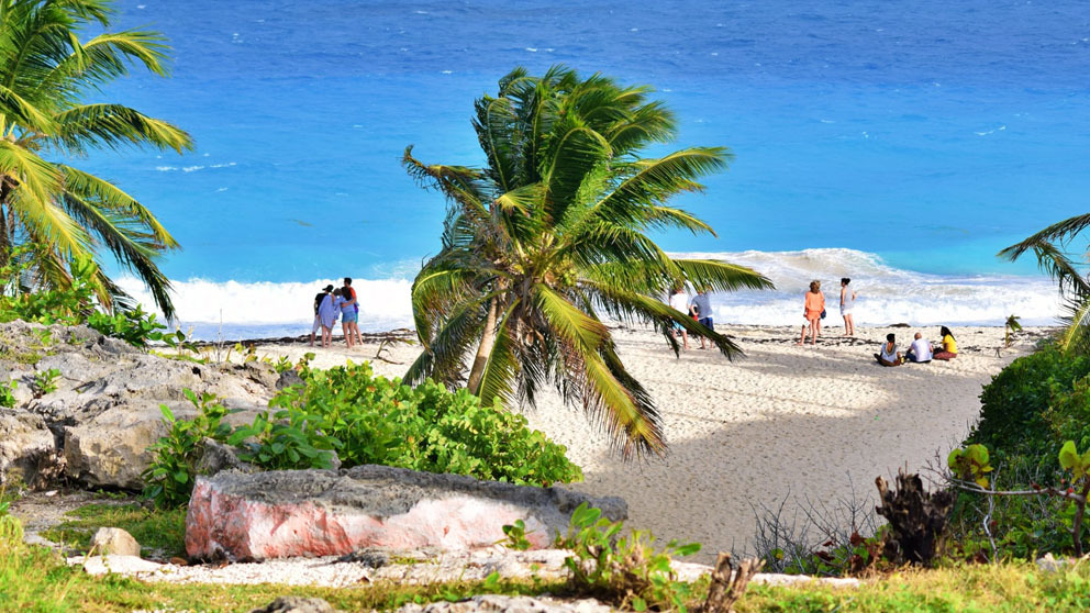 People hanging out on a tropical beach