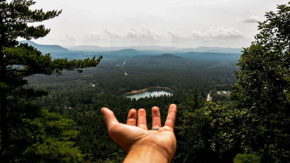 hand showing towards trees and a lake