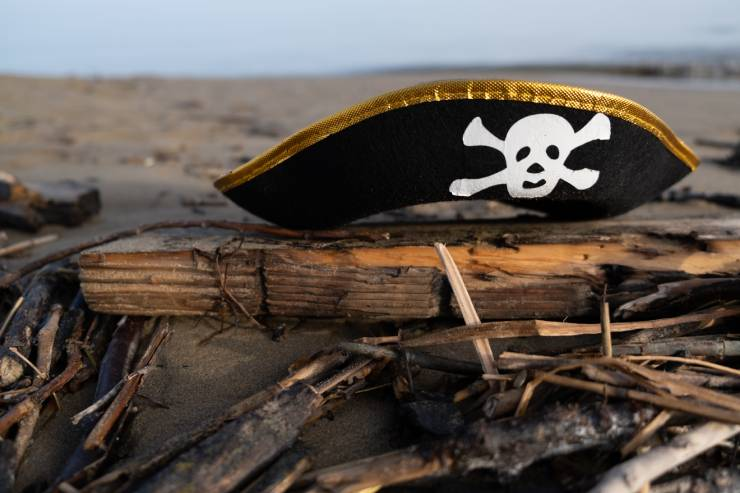 a child's pirate hat sits on top of a pile of driftwood at the beach
