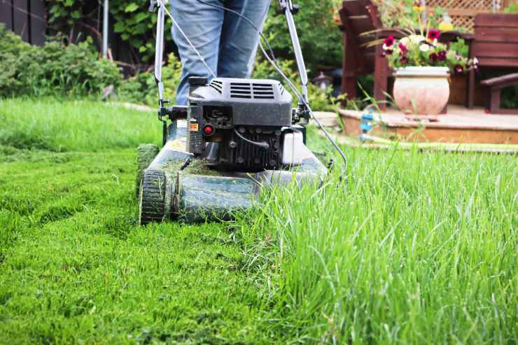 a lawn mower is being used in a yard to cut the grass, with short cut grass on the right and long grass on the left