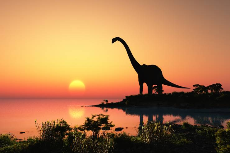A Long-neck dinosaur stands on the shoreline watching the sunset.