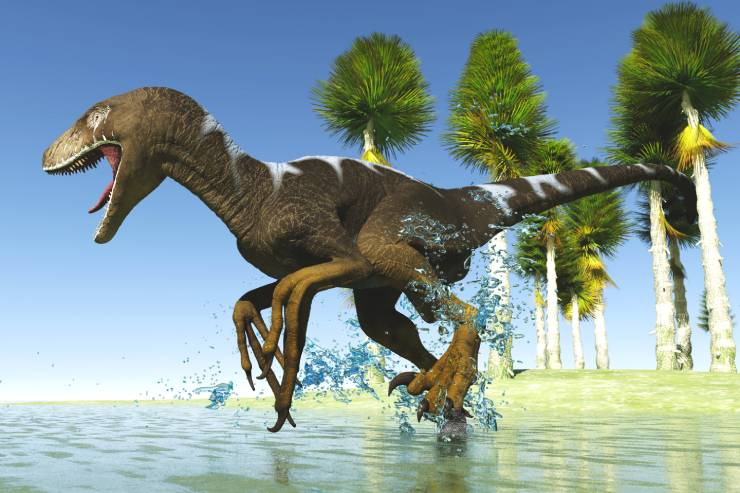 Dinosaur with sharp teeth and claws running through water with palm trees in the background.