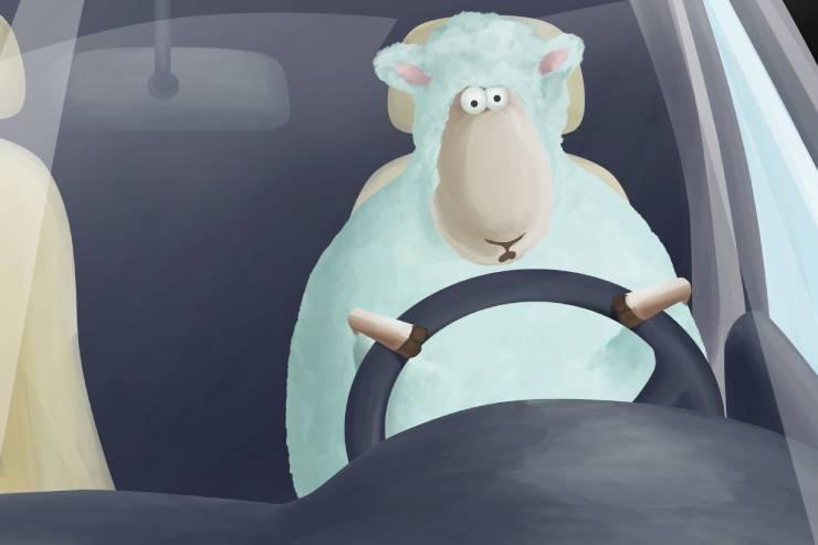 an illustration of a cartoon sheep driving a car