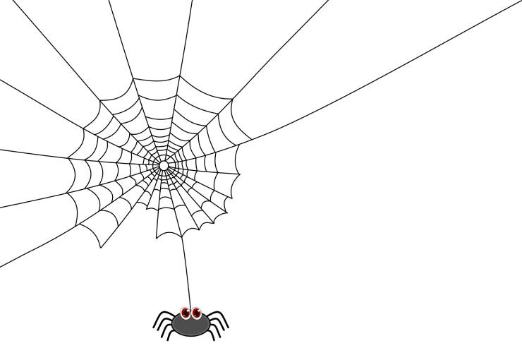 a cartoon illustration of a spiderweb and a spider