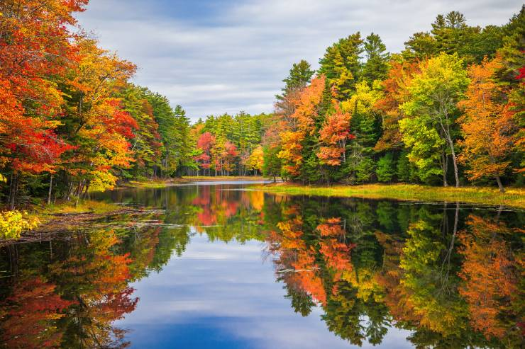 a lake surrounded by fall-colored trees