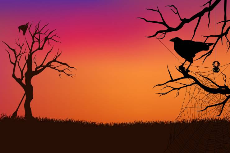 an illustrated spooky sunset scene complete with bare trees, a spiderweb, a crow, and a witch's hat and broom
