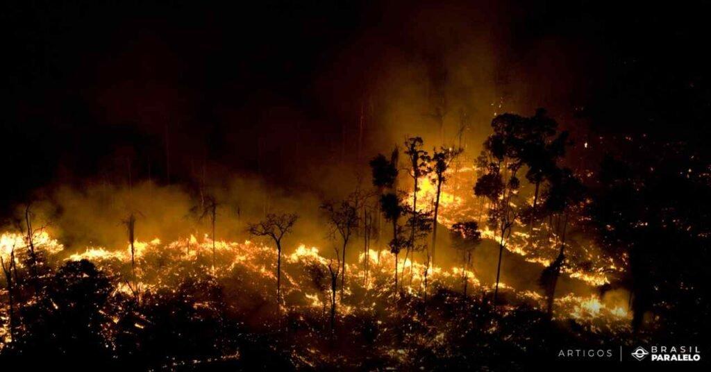 Desmatamento-e-queimadas-na-Amazonia