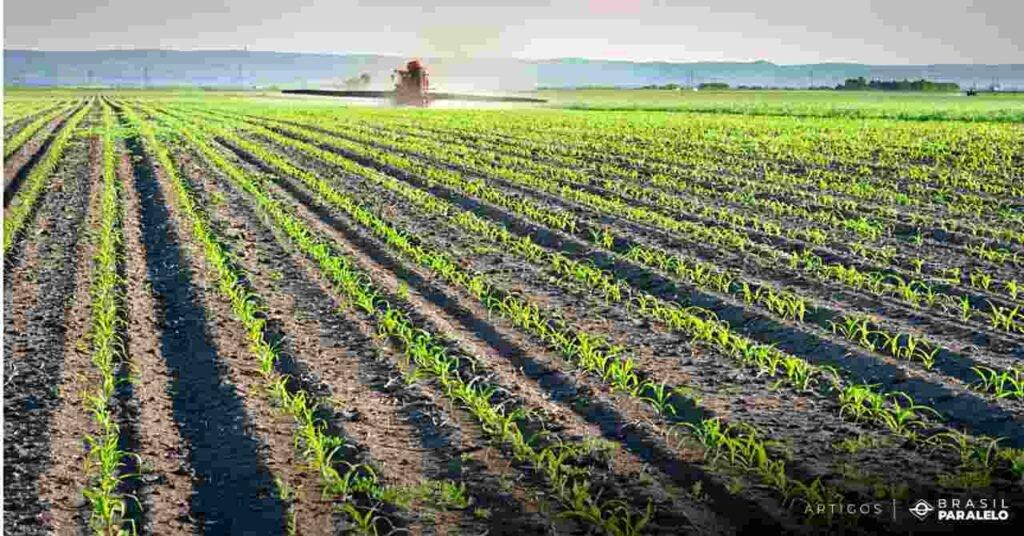 producao-de-alimentos-para-o-aumento-do-numero-de-pessoas-no-mundo