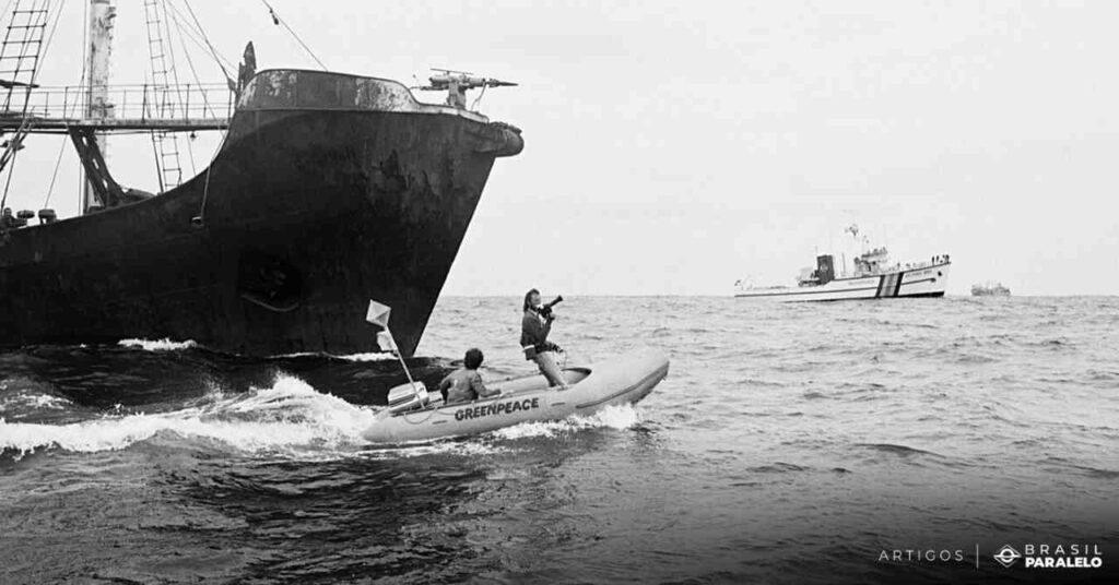 Os-membros-do-Greenpeace-tentam-impedir-que-barcos-russos-cacassem-baleias