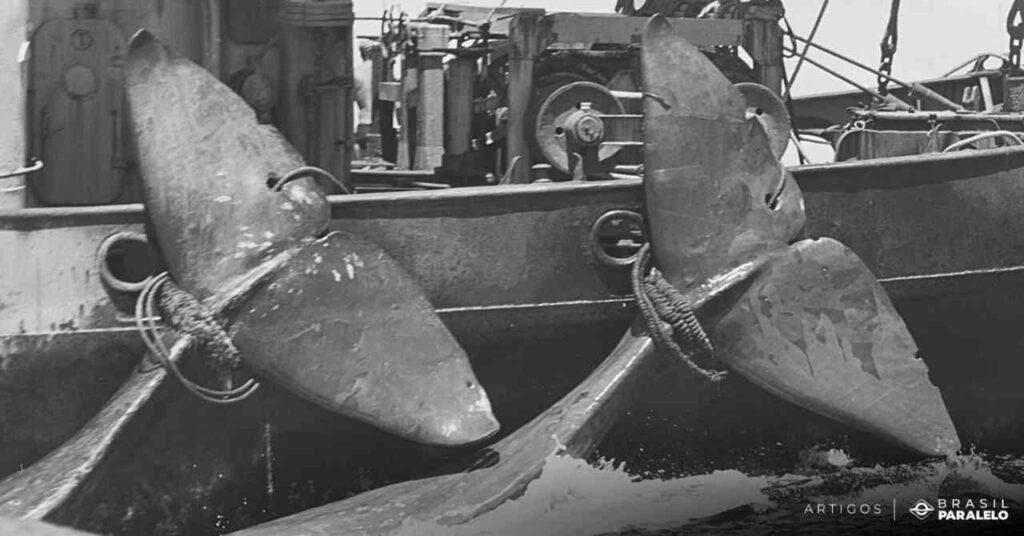 Campanha-da-historia-do-Greenpeace-de-protecao-as-baleias