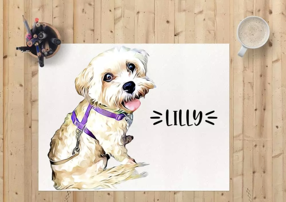 Lilly the dog