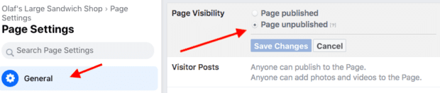 page settings including visibility and