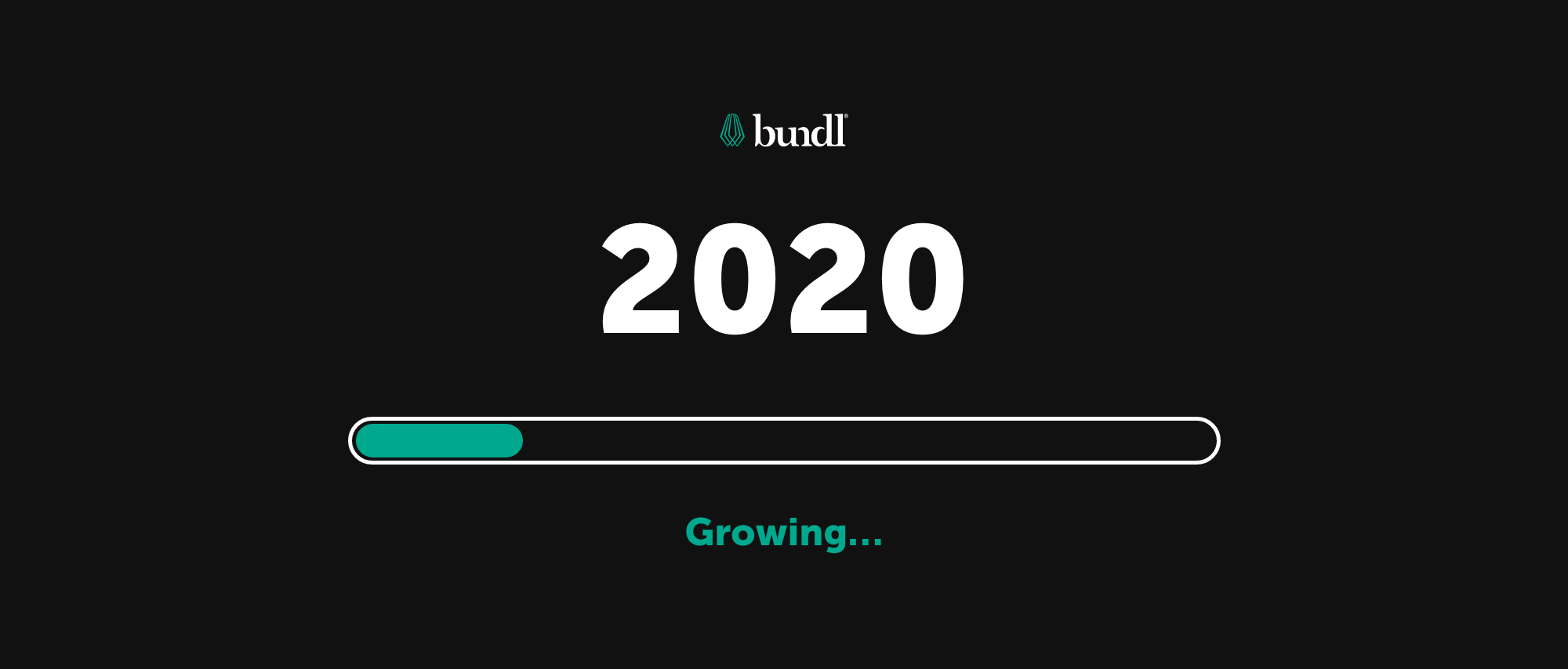 Accelerating Growth in 2020 With Our Own Unique Brand of Skills and Capabilities