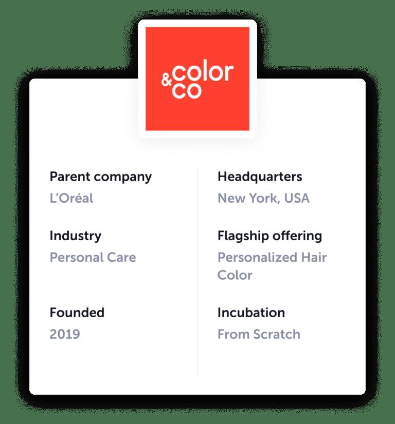 L'Oreal Color & Co: Startup information