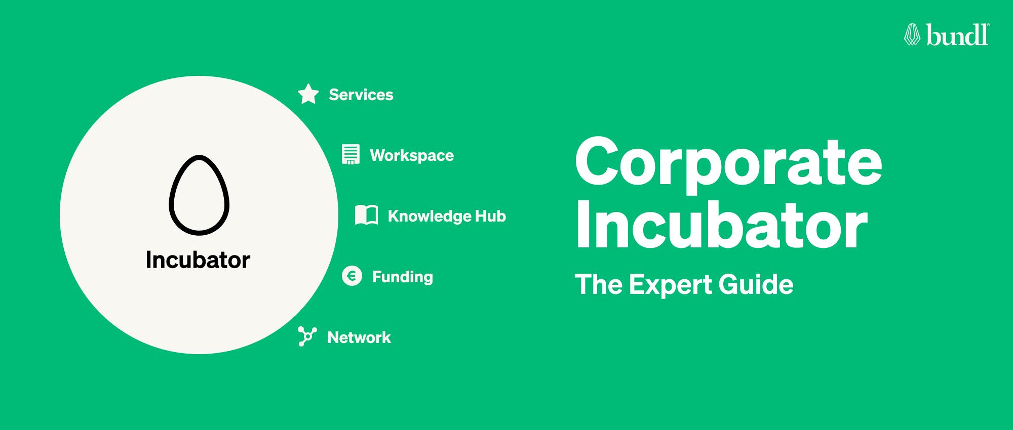 Corporate Incubators: The Expert Guide.