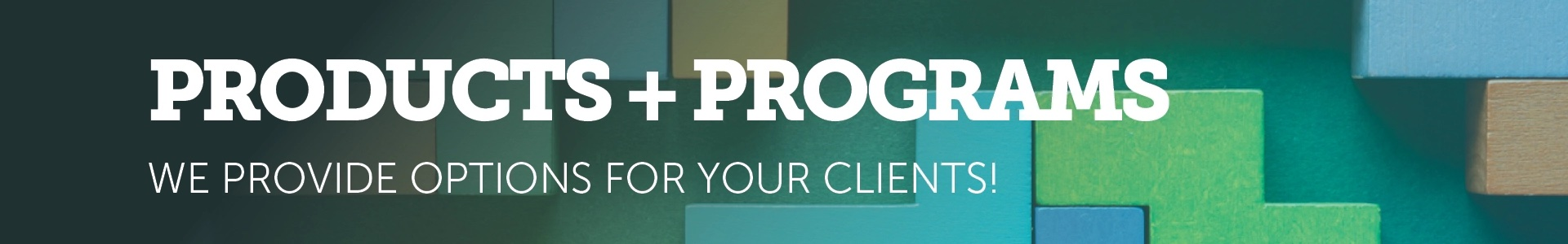 Products and Programs banner