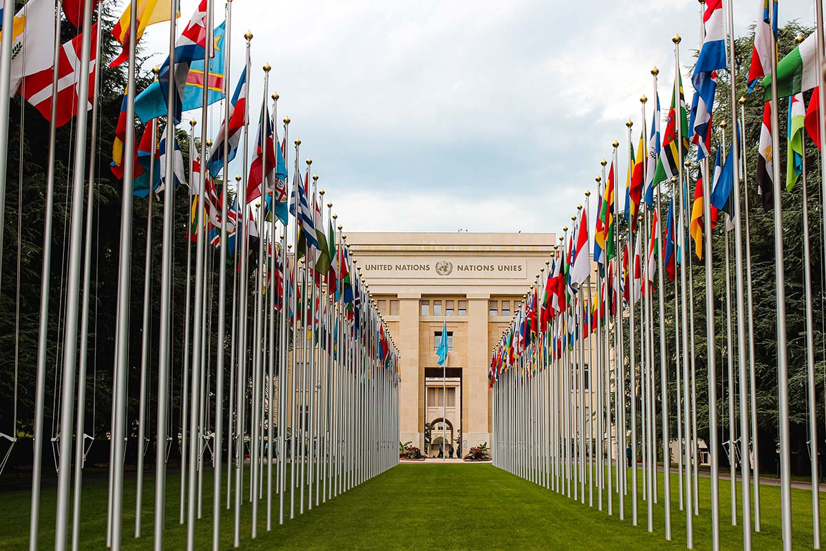2030 Agenda: How the UN SDGs affect businesses
