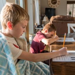 alunos estudam em escola em casa
