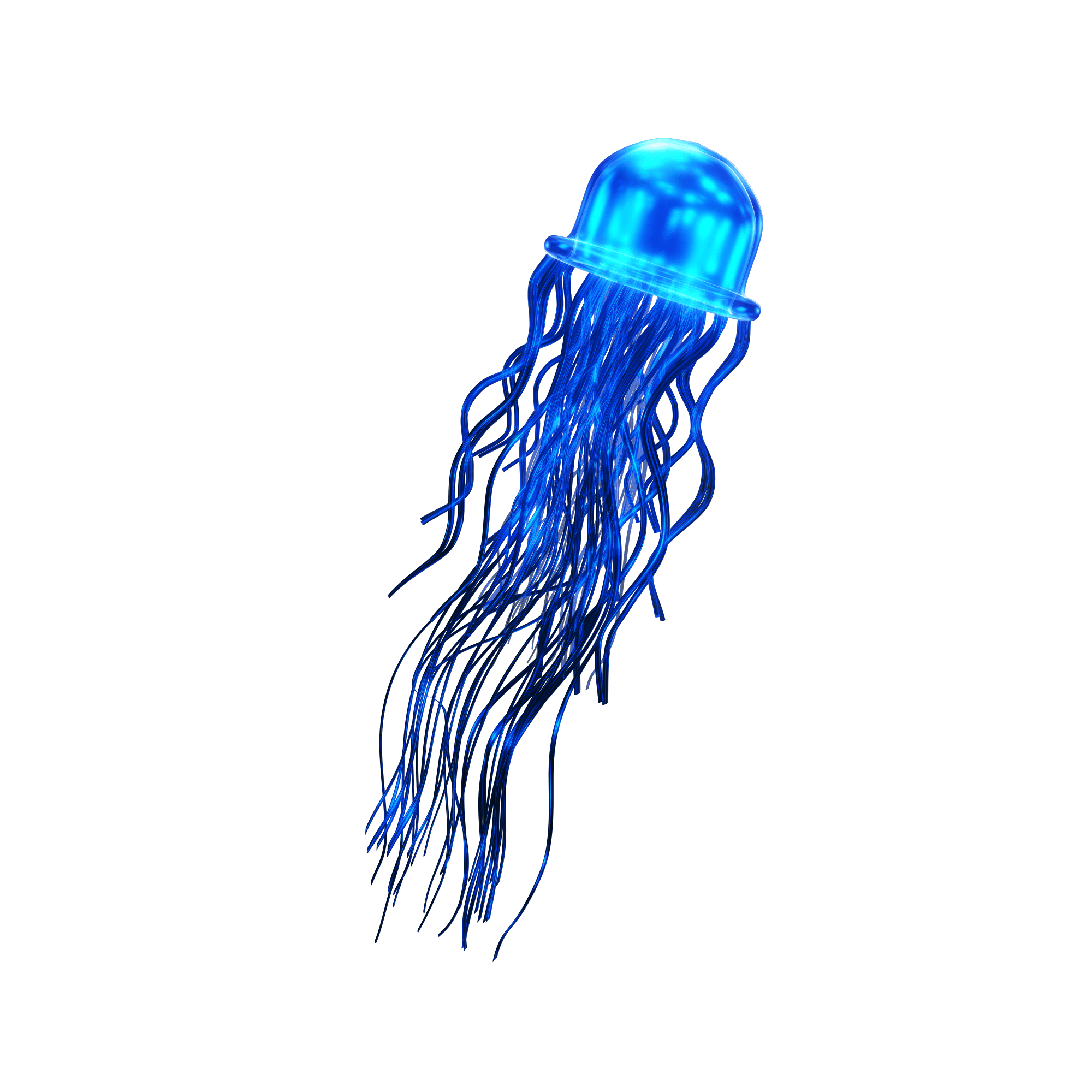 Belly the long narrow jelly that's blue and heals all jellyfish
