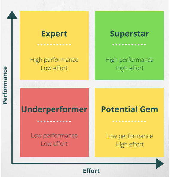 High Performing Employees (HIPO)
