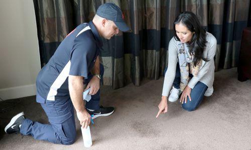 Carpet Stain Treatment