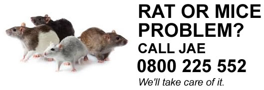 We'll help Get rid of Rats and Mice