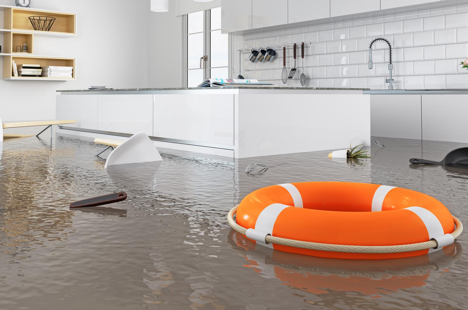 Water Damage = Emotional Damage!