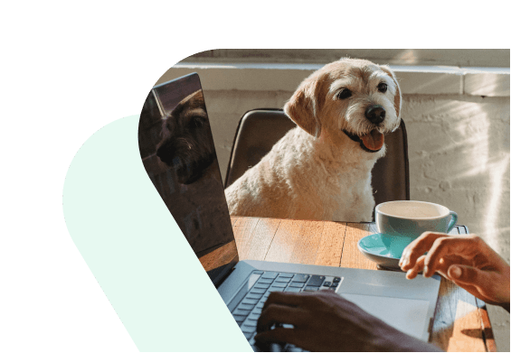Dog sitting next to a person, while the person drinks coffee and works on the laptop