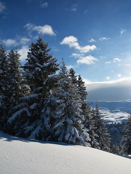 DomaineEvasion - Megève - Ski