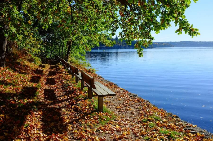 pretty benches on lakefront view fall weather peaceful imagery dealing with stress in nursing
