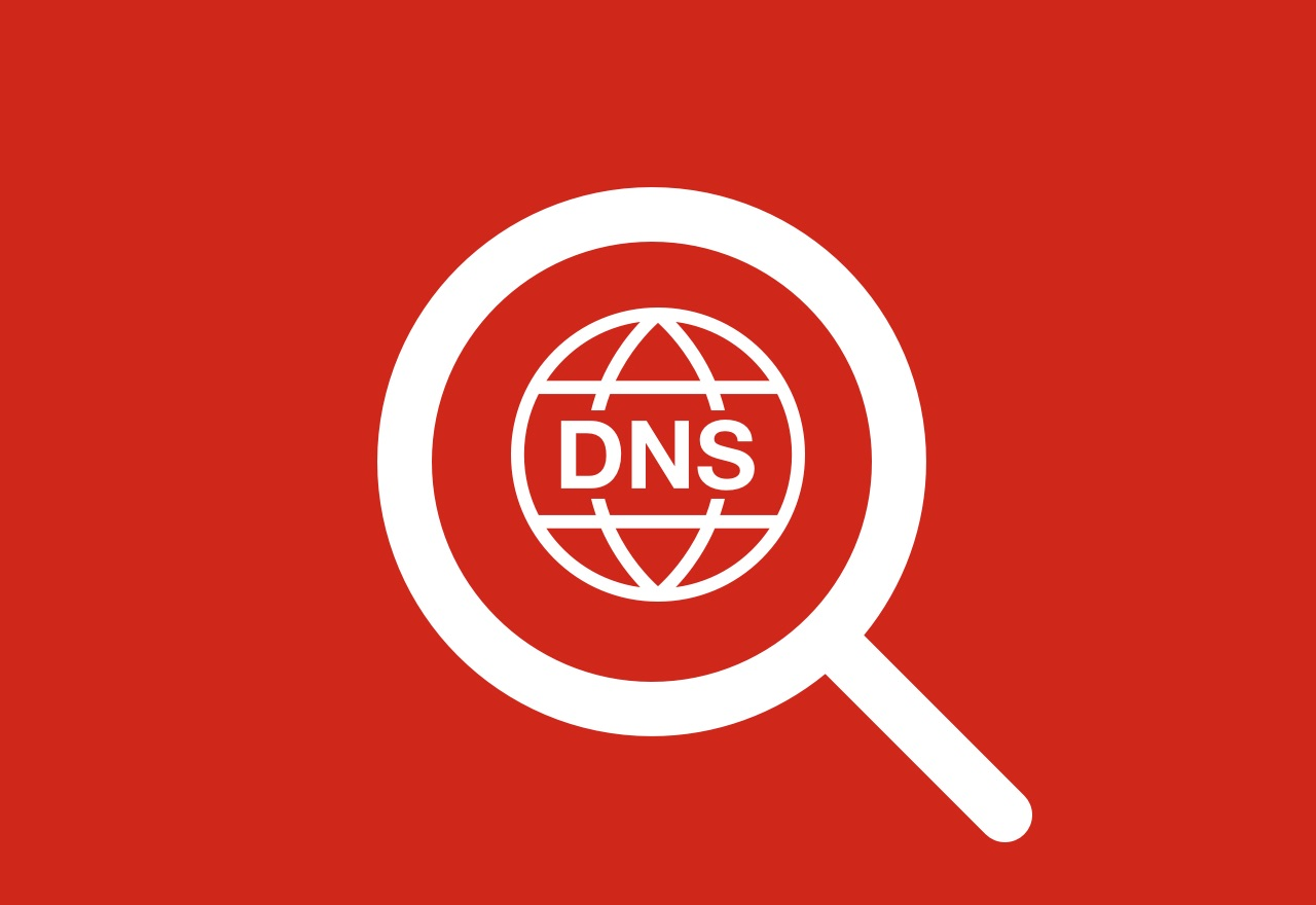 Is your organization leaking sensitive Dynamic DNS data? Here's how to find out